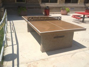 Park Pong new table
